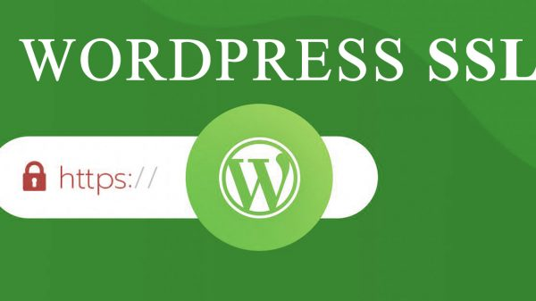 wordpress ssl kurulumu